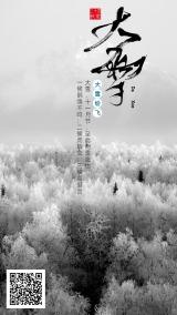 大雪二十四节气日签宣传海报