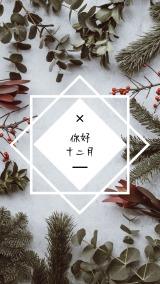 你好 十二月 早安 圣诞月 文艺清新