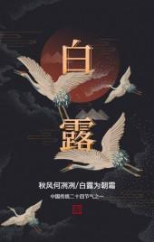 中国风24节气白露节气宣传传统节气科普企业宣传H5