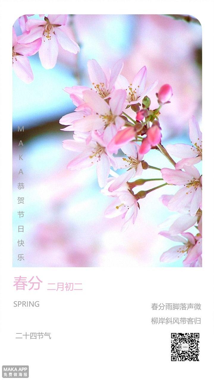 春分季节海报白粉色节气