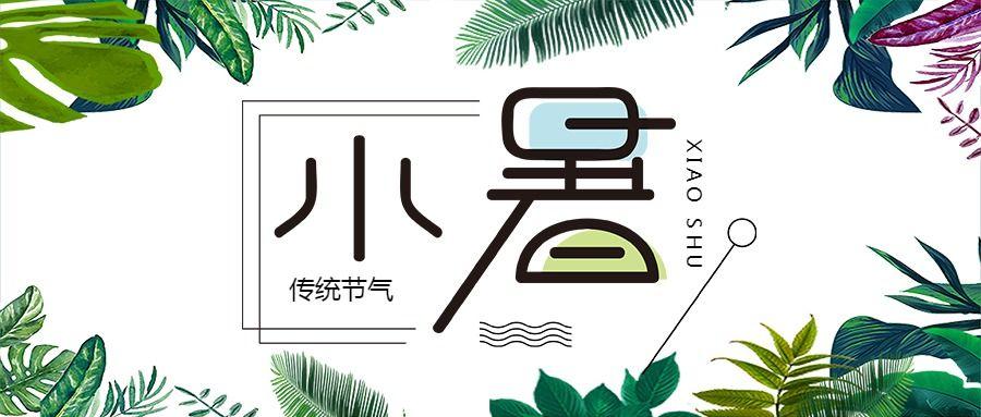 清新文艺风小暑节气宣传通用微信公众号封面