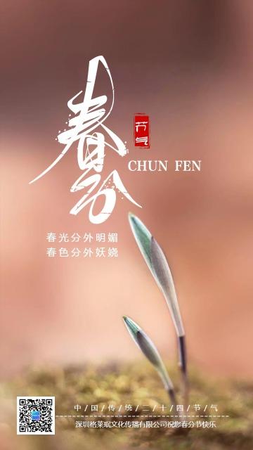 文艺清新春分节气日签祝福海报