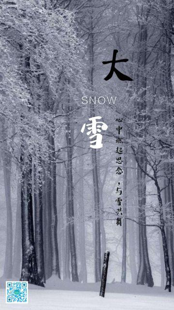 简约大气文艺自然大雪节气问好活动海报