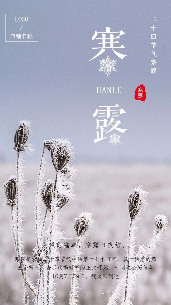 中国二十四节气之寒露宣海报