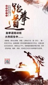 跆拳道班  招生艺术高考集训招生培训辅导报名宣传海报