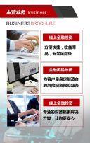 企业简介 金融公司 IT公司简介