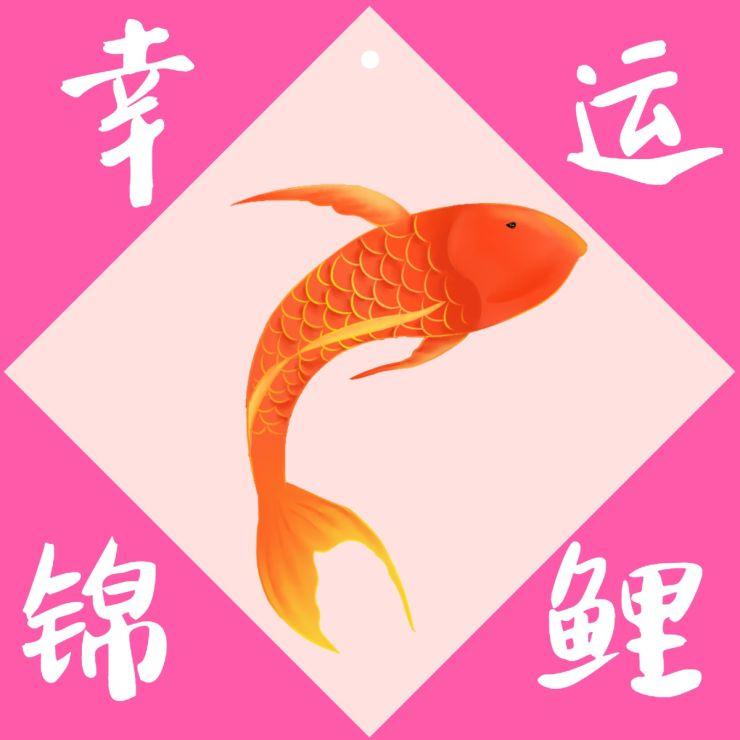 红色幸运锦鲤祝福促销公众号封面次条小图