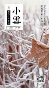 小雪节气2019白色简约大气企业宣传海报