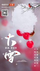 中国风二十四节气大雪雪景摄影简单大气高端海报