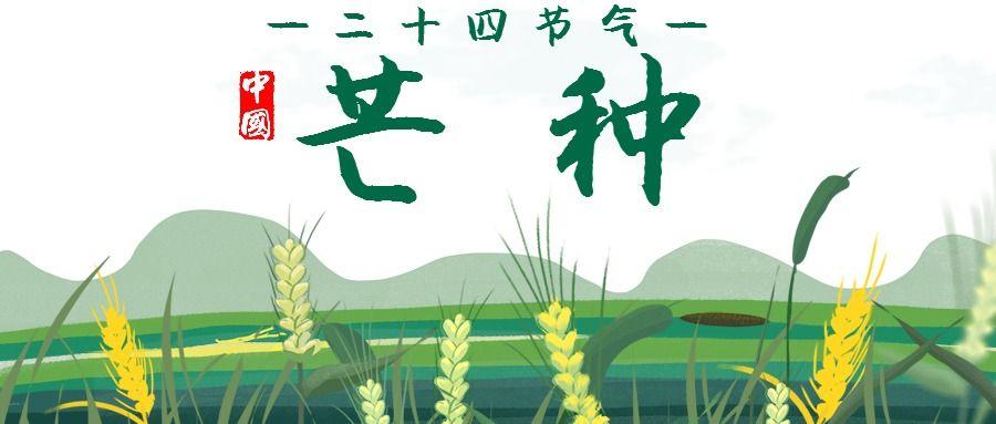 芒种绿色清新中国二十四节气宣传微信公众号大图