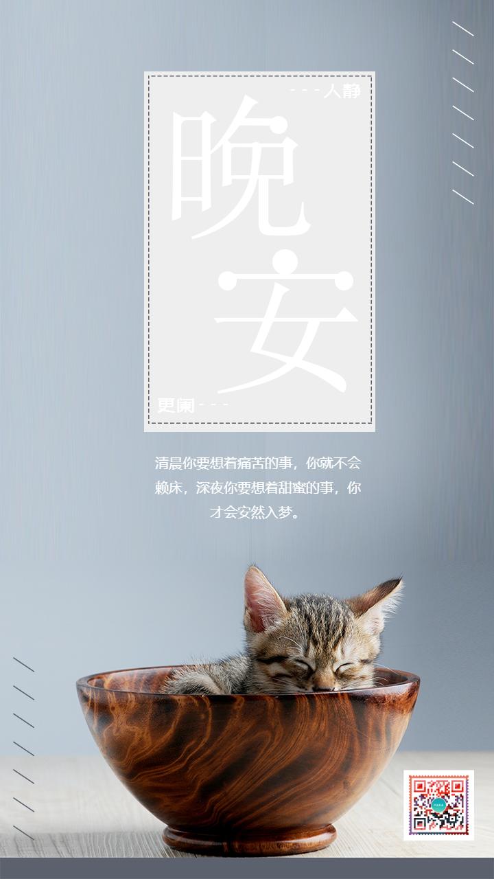时尚简约猫咪晚安日签海报