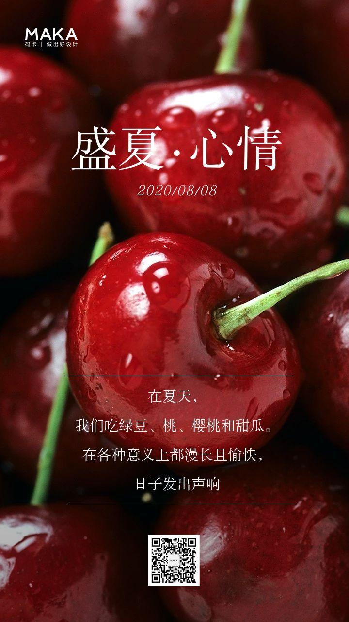 红色清新大暑心情日签手机海报