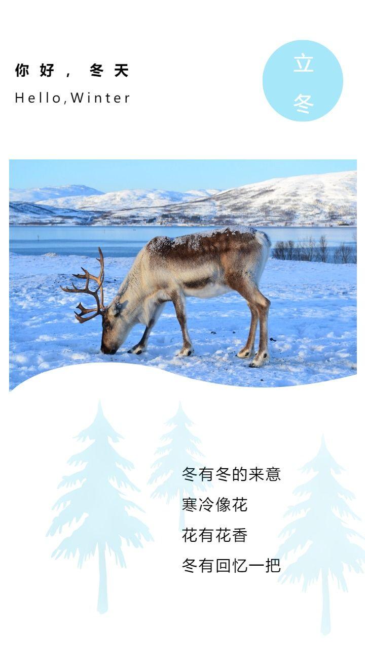 立冬节气日签