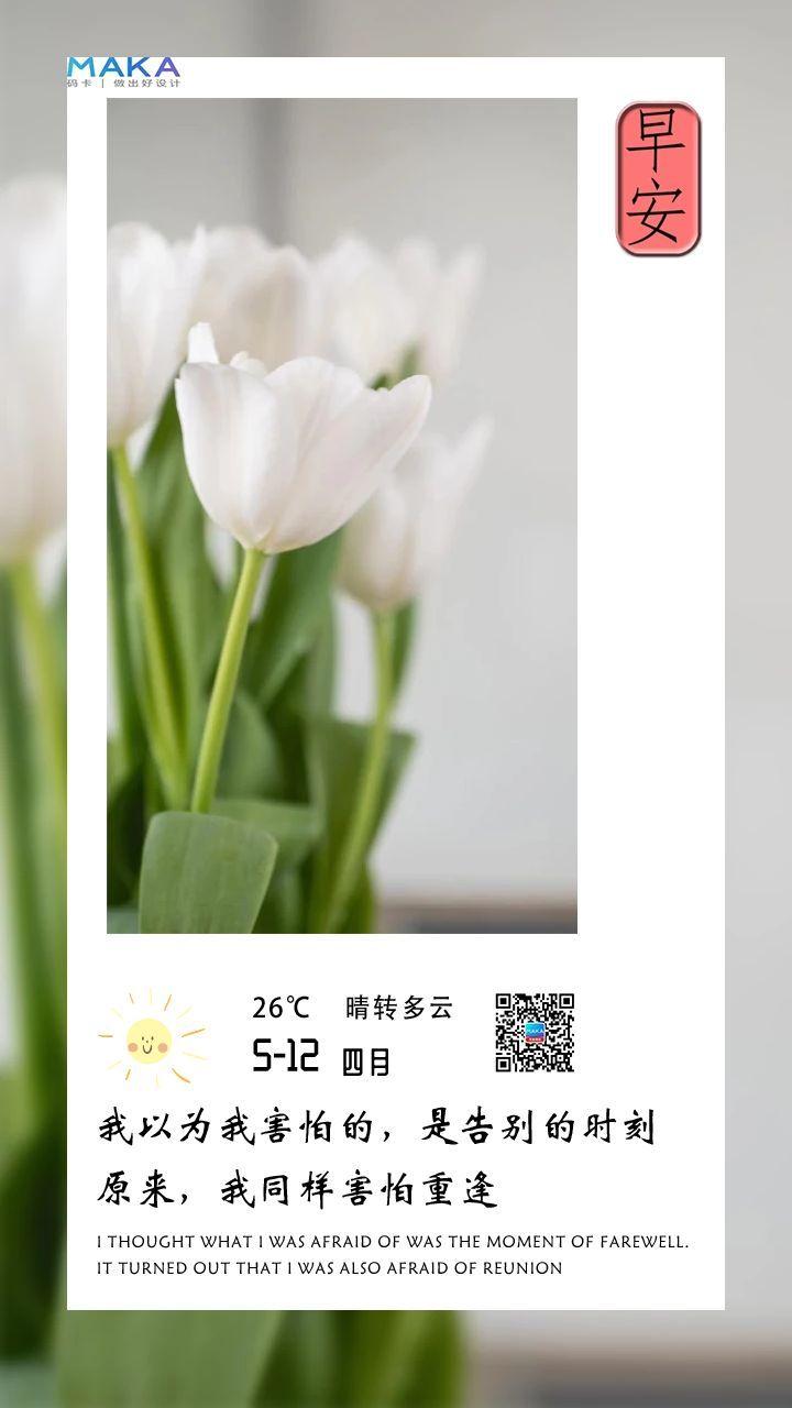 清新自然简约日签手机海报