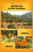 新鲜水果雷波脐橙水果店促销模板