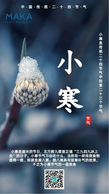 深蓝色实景小寒节气宣传海报