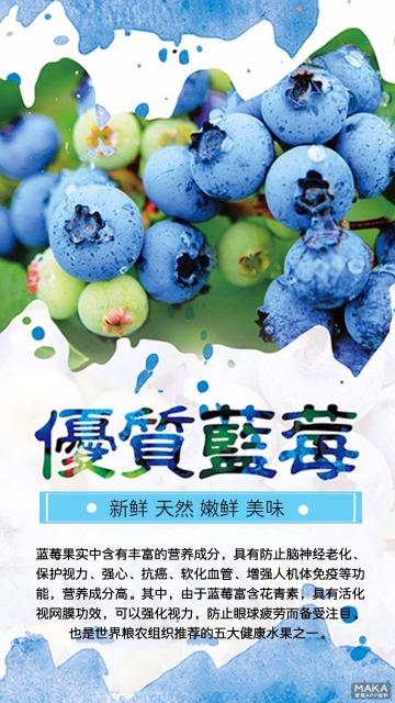 蓝莓 简约大气水果海报