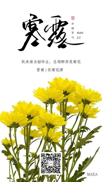 寒露节饮菊花酒二十四节气