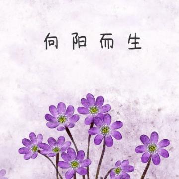 水彩紫色花朵向阳而生微信社交平台个性头像