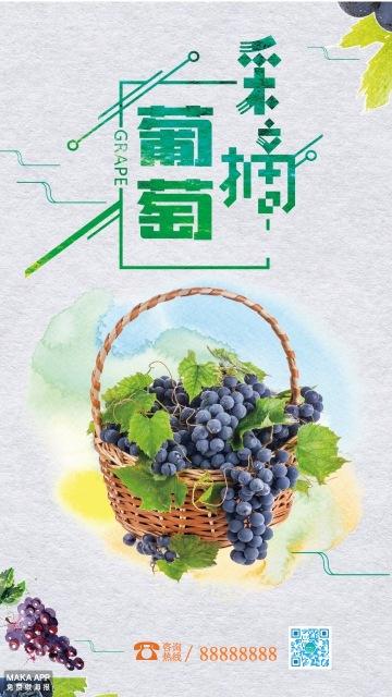 葡萄熟了采摘宣传海报简约高大上