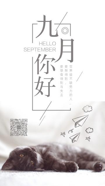 唯美简约灰色猫咪九月你好小清新早安励志日签晚安心情寄语宣传海报