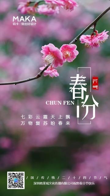 简约文艺风传统春分节气日签海报