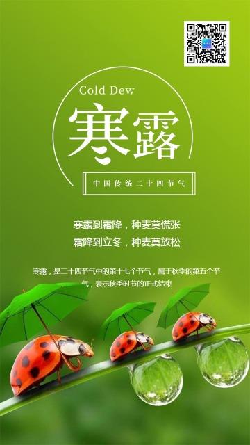 绿色清新文艺简约寒露节气日签海报