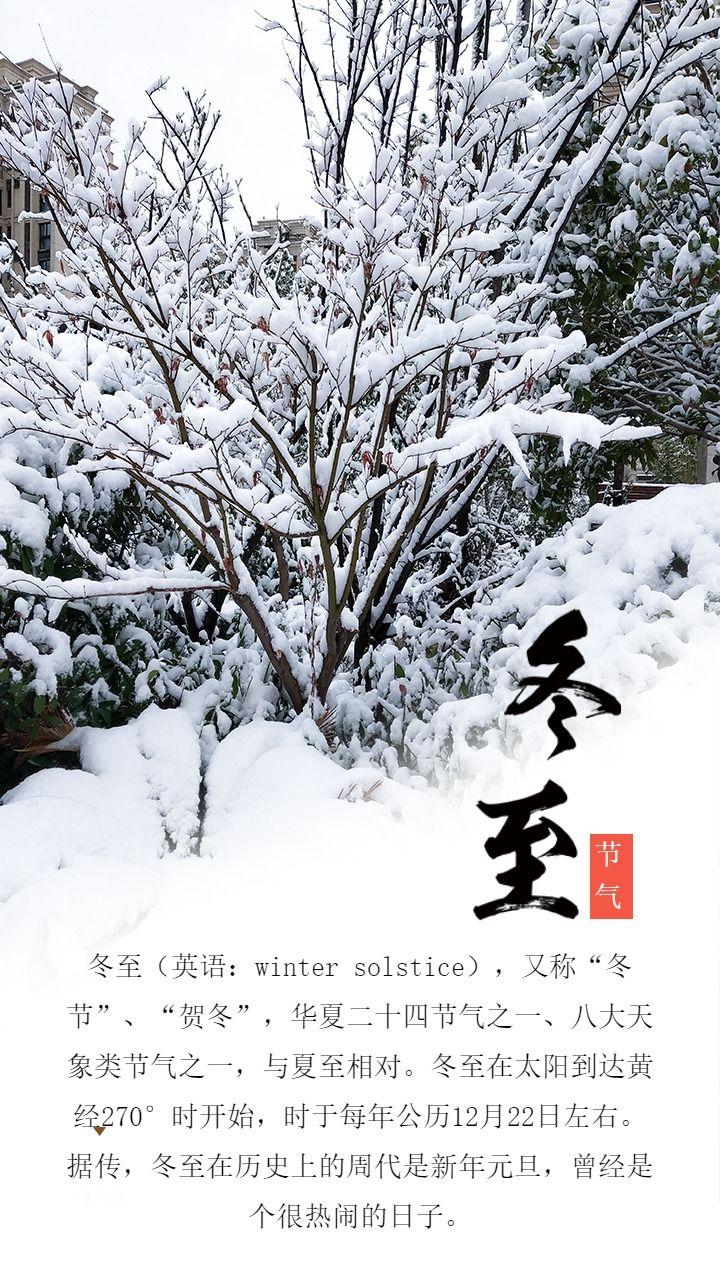 简约清新冬至宣传海报