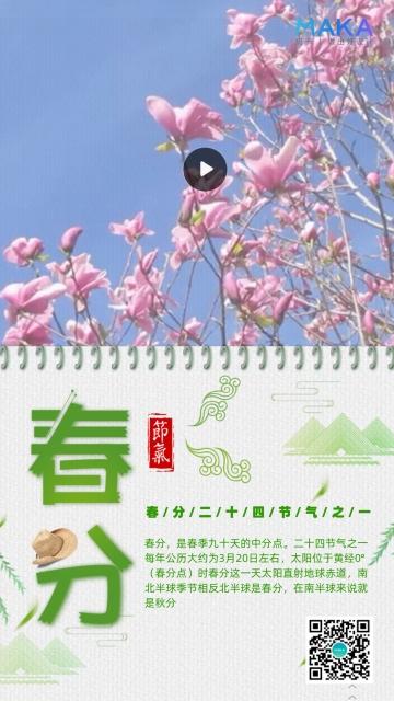 简约唯美二十四节气春分手机视频模板