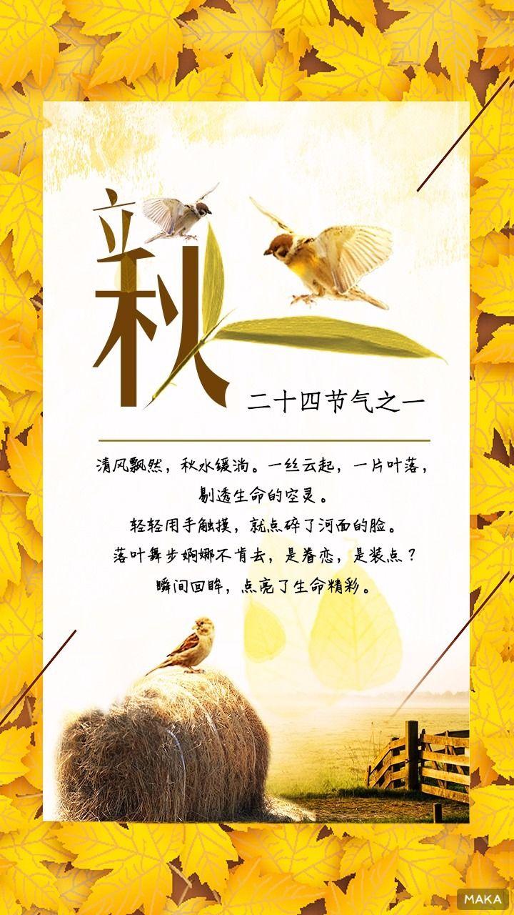 节气立秋枫叶海报