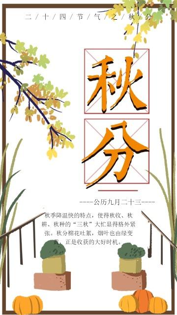 秋分 中国传统节气之秋分 二十四节气之秋分 秋分知识普及宣传