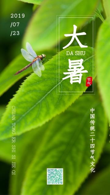 绿色清新简约大气设计风格二十四节气之大暑宣传海报