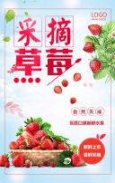 采摘草莓 现摘草莓 水果采摘节 有机农业 农家乐 水果园