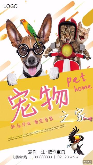 宠物之家开业促销宣传黄色