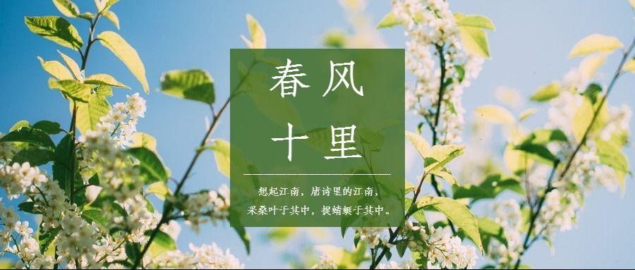 春天春季励志正能量公众号封面头图