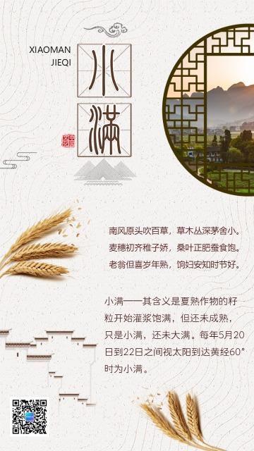 简约中国风小满二十四节气创意海报日签