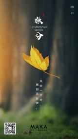 暖黄自然文艺秋分传统二十四节气问候日签宣传海报