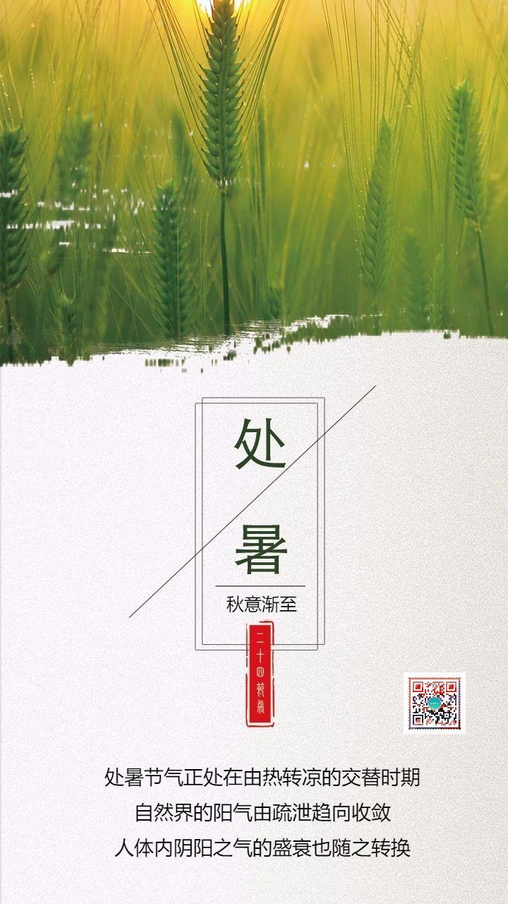 绿色简约处暑二十四节气节气日签手机海报