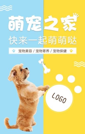 宠物店宣传