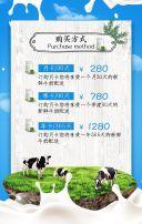 牛奶/饮料/牧场/活动促销/新店开业/小清新