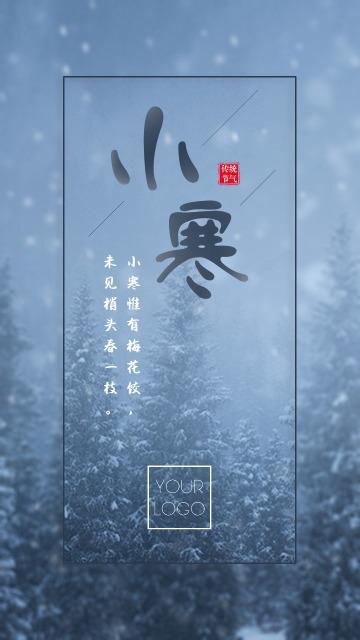 小寒节气十二月节气寒冷冬季雪天苍茫雪松