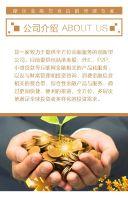 高端金融企业介绍推广