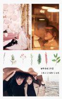 婚礼粉色小清新植物邀请函