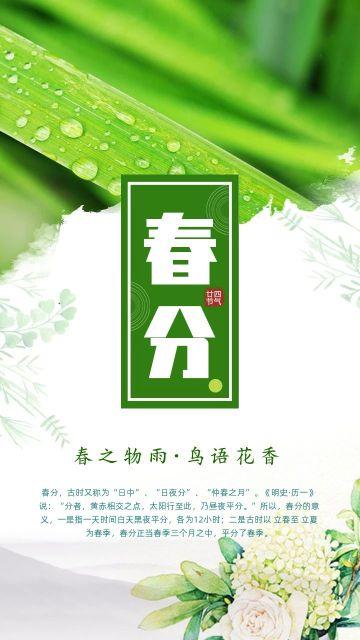 2020春分清新绿色植物海报模板