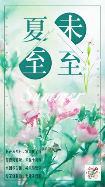文艺清新绿色夏至文化传播祝福海报