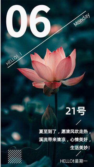 夏至小清新莲花日签宣传海报