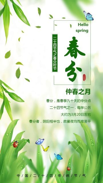 简约小清新绿色春分企业通用节气宣传日签节气海报