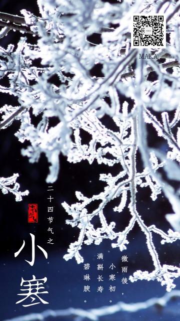 小寒节气十二月节初寒蓝白色
