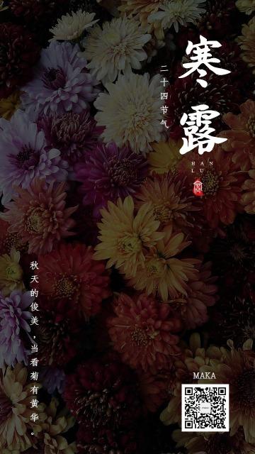 寒露二十四节气菊始黄华海报