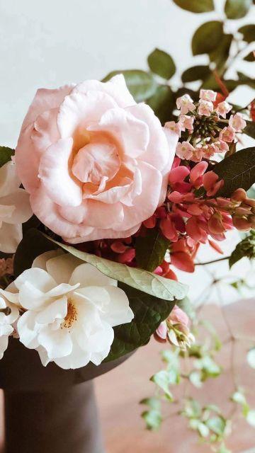 粉红色简约风格鲜花手机壁纸